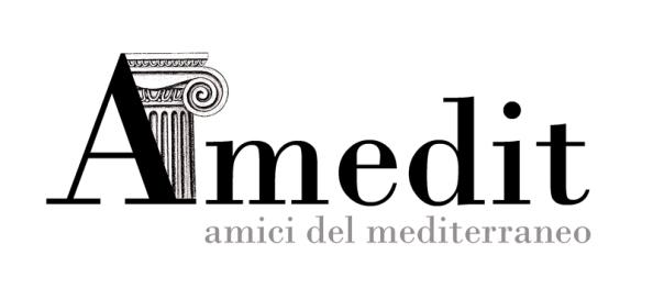 Logo ufficiale Amedit