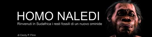 homo_naledi_nuovo_ominide