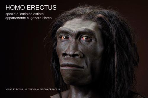 homo_sapiens_claudio_tuniz_patrizia_tiberi_vipraio (2)