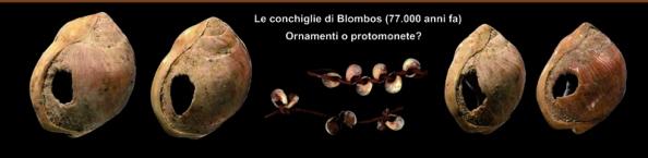 homo_sapiens_claudio_tuniz_patrizia_tiberi_vipraio (5)